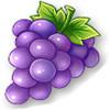 全民农场葡萄种