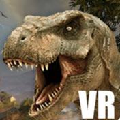 VR 空间
