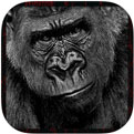 Ultimate Gorilla Animal Hunting Sim