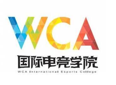 打开新视野 WCA国际电竞学院眼中的电竞教育