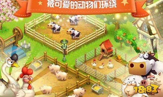 全民农场动物环绕 可爱萌翻全场