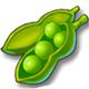 全民农场豌豆种