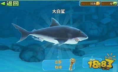 饥饿鲨进化最终鲨鱼介绍 大白鲨能力分析