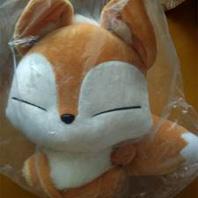 《青丘狐传说》小狐狸已收
