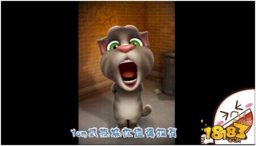 """素材,结合网络热词,段子制作""""汤姆猫斗图表情包"""",七夕撩妹视频,鬼畜"""