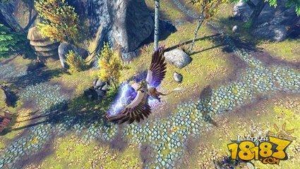战术为王 太极熊猫3猎龙坐骑搭配攻略