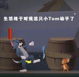 论斗图毛和官方表情手游表情帝Tom就没怕过pdd暴走老鼠包图片