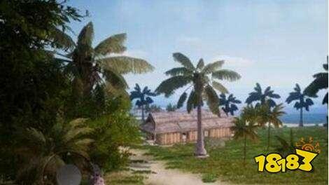 位于独特的东南亚热带丛林海岛,蓝天,白云,海滩,椰子树一应俱全!