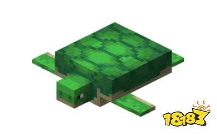 我的世界海龟介绍分享 海龟属性详解