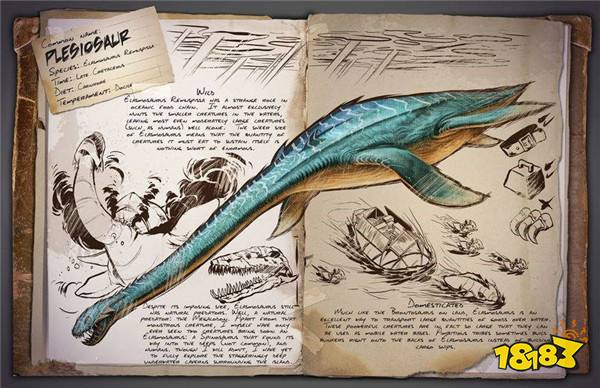 巨大的身躯,灵活的颈部及锋利的牙齿使其处于海洋食物链的顶端,会攻击