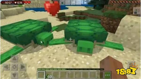 我的世界海洋版本海龟有什么用处 海龟养成攻略