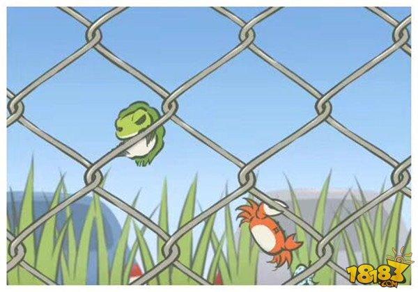 旅行青蛙图片明信片汇总 旅行青蛙相册大全