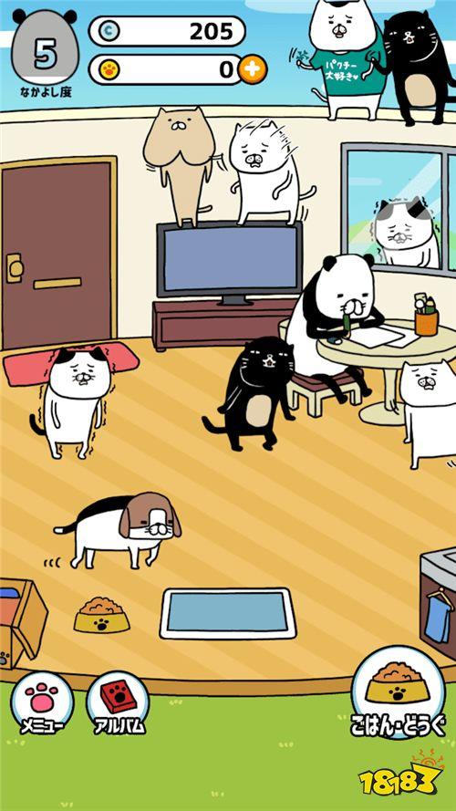 一起享受休闲时光《熊猫与狗狗的美好生活》事前登录开始
