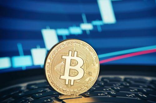 2021年下半年哪个币会涨