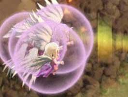 9本玩家分析:COC8月平衡性调整对天使的影响