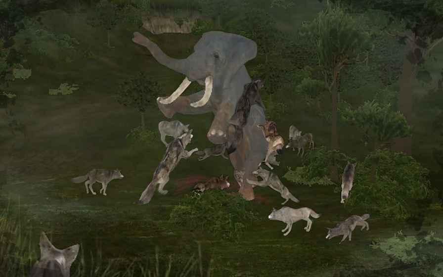 动物跑起来截图