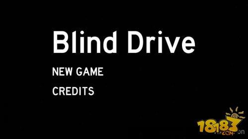盲驾驶截图