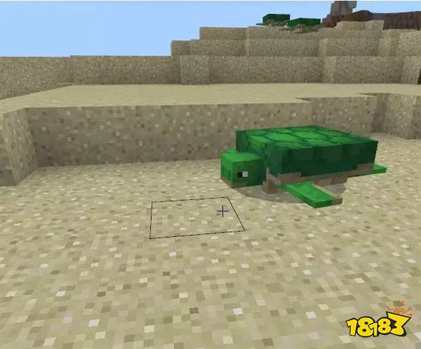 MC基岩版大更新:溺尸在欺负小海龟 快去战斗吧