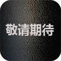 Project-E官网