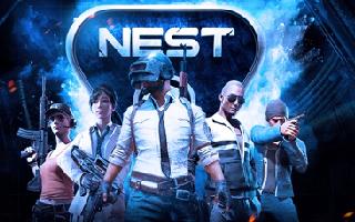 NEST2018 PUBG线上赛分组信息