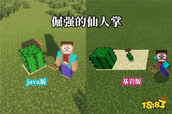 我的世界一个游戏两个版本 你不知道的七个特性
