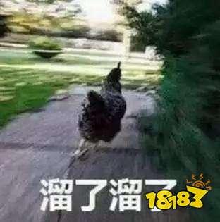 官宣:CJOY官方天猫旗舰店隆重上线!开业优惠火热来袭!!!