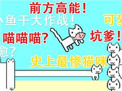 吃个鱼怎么那么难?史上最惨的小猫咪!