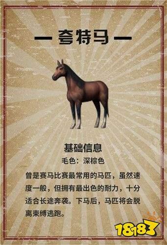 明日之后马在哪 马匹驯服方法