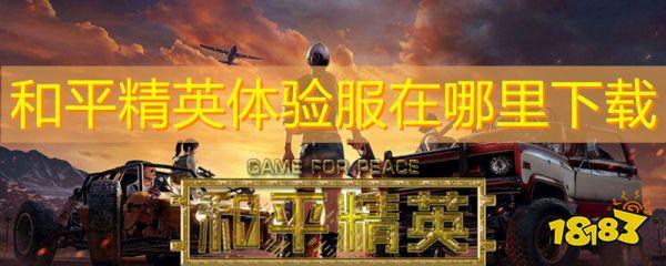 和平精英体验服在哪里下载 和平精英体验服怎么下载可以玩