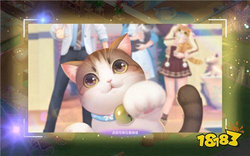 《喵与筑》手游评测:治愈系养猫 一切都为了吸猫