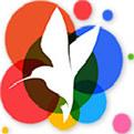 小鸟壁纸v3.11最新版下载