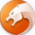 猎豹安全浏览器pc版下载