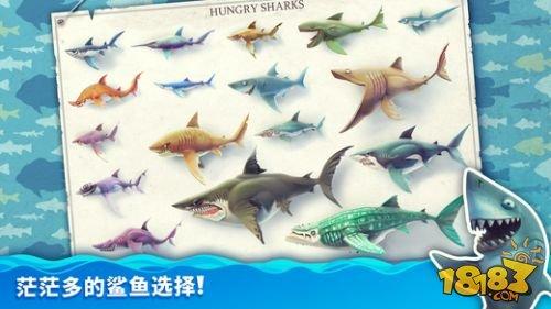 饥饿鲨世界英文破解版