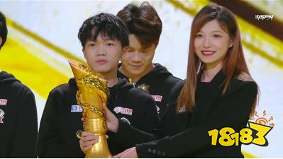 KPL总决赛落幕,DYG横扫AG夺冠,小义获得FMVP