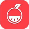柚子游戏电脑版下载