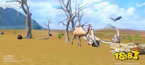 妄想山海骆驼在哪里 骆驼位置介绍