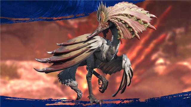 伞鸟4.jpg