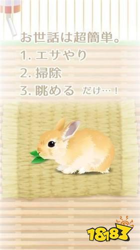 治愈系兔子养成 Android下载