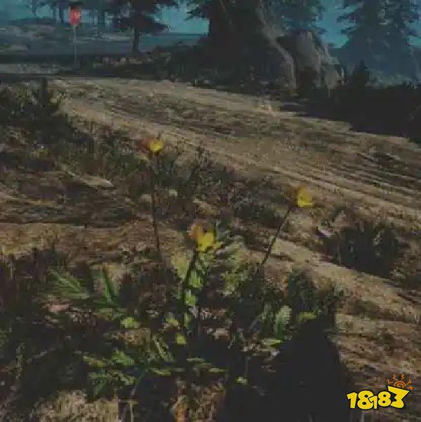 往日不再蕨麻药草收集点与地图示意