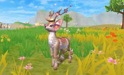 创造与魔法夕颜鹿怎么获取 夕颜鹿获取方法
