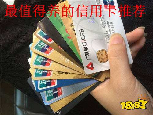 什么信用卡值得养?这些信用卡为你推荐